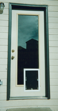 Halepetdoor denverdog and pet door installation through glass dog doors are clearly the best choice planetlyrics Images